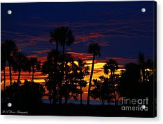 Indigo Sunset Acrylic Print by Barbara Bowen