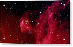 Infant Stars Hatching In The Head Of The Hunter Constellation, Orion Acrylic Print by American School