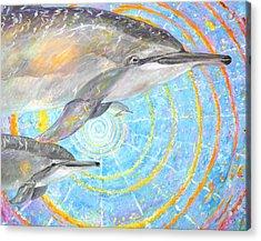 Infinite Dolphin Universe Acrylic Print by Tamara Tavernier