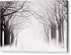 Infinity - Trees Covered With Hoar Frost On A Snowy Winter Day Acrylic Print by Roeselien Raimond