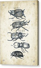Insects - 1792 - 01 Acrylic Print by Aged Pixel
