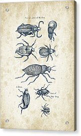Insects - 1792 - 02 Acrylic Print by Aged Pixel
