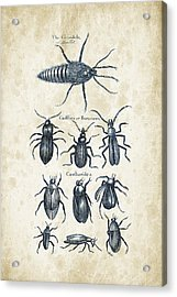 Insects - 1792 - 04 Acrylic Print by Aged Pixel