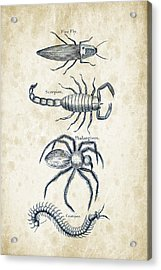 Insects - 1792 - 19 Acrylic Print by Aged Pixel