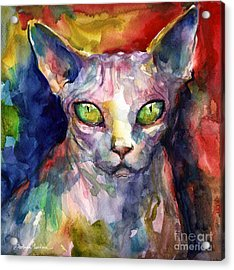 intense watercolor Sphinx cat painting Acrylic Print by Svetlana Novikova