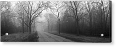 Into The Fog Acrylic Print by David April
