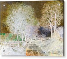 Inv Blend 4 Sisley Acrylic Print by David Bridburg