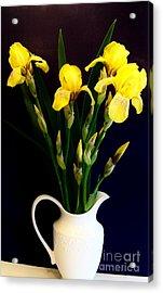 Iris Bouquet Acrylic Print by Marsha Heiken