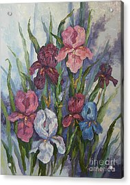 Iris Acrylic Print by M J Weber
