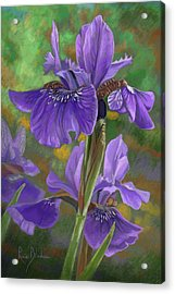 Irises Acrylic Print by Lucie Bilodeau
