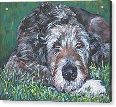 Irish Wolfhound Acrylic Print by Lee Ann Shepard