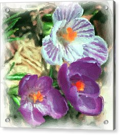Ist Flowers In The Garden 2010 Acrylic Print by David Lane