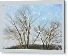 It Is Cold Outside Acrylic Print by Gerlinde Keating - Keating Associates Inc