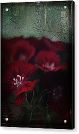 It's A Heartache Acrylic Print by Laurie Search