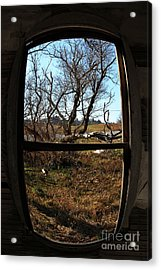 It's All A Matter Of Perspective Acrylic Print by Amanda Barcon