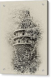 Ivy Covered Castle In The Woods Acrylic Print by Bill Cannon