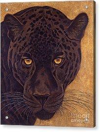 Jag Acrylic Print by Lawrence Supino