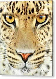Jaguar Acrylic Print by Bill Fleming