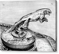 Jaguar Hood Emblem     Acrylic Print by Peter Piatt