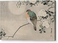 Japanese Silk Painting Of A Wood Pigeon Acrylic Print by Japanese School