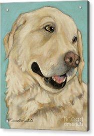 Jasper Acrylic Print by Pat Saunders-White