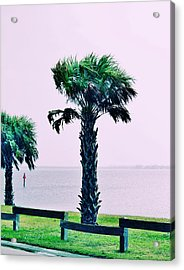 Jensen Causeway With Cross Processing Acrylic Print by Don Youngclaus