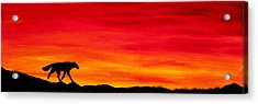 Journey Home Acrylic Print by Beth Davies