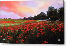 June Poppies Acrylic Print by Dianna Ponting