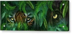Jungle Eyes - Tiger And Panther Acrylic Print by Carol Cavalaris