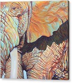 Jupiter Acrylic Print by Sarah Soward