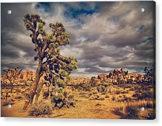 Just A Touch Of Madness Acrylic Print by Laurie Search
