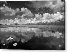 Just Breathe In Black And White Acrylic Print by Debra and Dave Vanderlaan