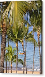 Kayakers Through Palms Acrylic Print by Ron Dahlquist - Printscapes