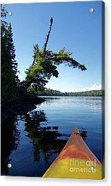 Kayaking Under The Eagle Acrylic Print by Sandra Updyke