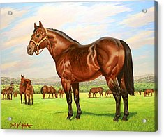 King P-234 No.two Acrylic Print by Howard Dubois