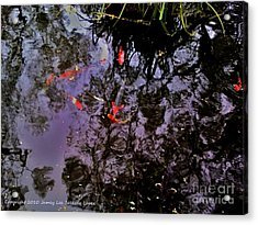 Koi Reflections Evening Acrylic Print by Jamey Balester