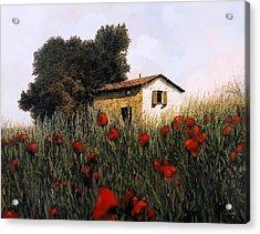 La Casetta In Mezzo Ai Papaveri Acrylic Print by Guido Borelli