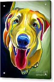 Lab - Spencer Acrylic Print by Alicia VanNoy Call