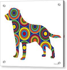 Labrador Retriever Acrylic Print by Ron Magnes