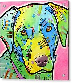 Labrador Vintage Acrylic Print by Dean Russo