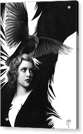 Lady Raven Surreal Pencil Drawing Acrylic Print by Thubakabra