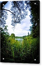 Lake View Acrylic Print by Nicklas Gustafsson