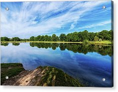 Lake View Acrylic Print by Tom Mc Nemar