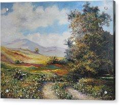Landscape In Dilijan Acrylic Print by Tigran Ghulyan