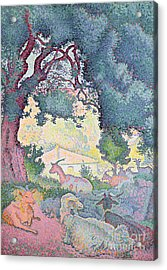 Landscape With Goats Acrylic Print by Henri-Edmond Cross