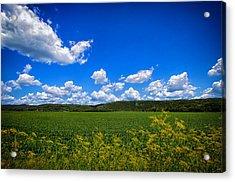 Lanesboro Fields Acrylic Print by Bill Tiepelman