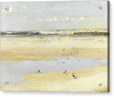 Lapwings By The Sea Acrylic Print by William James Laidlay