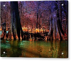 Late Evening In Reelfoot Acrylic Print by Julie Dant