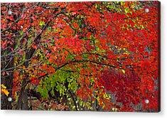 Layers Acrylic Print by Ed Smith