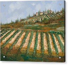 Le Case Nella Vigna Acrylic Print by Guido Borelli